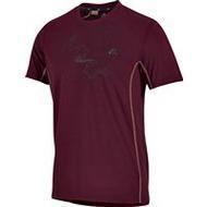 Pánské outdoor tričko Adidas Terrex SS Tee CHERRWOOD 082067